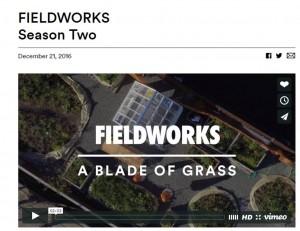 fieldworks2